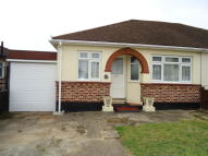 3 bed Semi-Detached Bungalow in CHELMSFORD DRIVE...