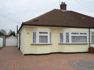 Semi-Detached Bungalow to rent in 20 Hornbeam Avenue...