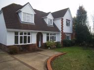 Ipswich Road Detached property to rent