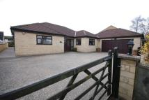 4 bed Detached Bungalow for sale in Gipsy Lane, Frome