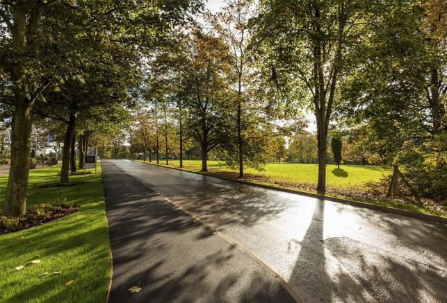 Wedgwood Park