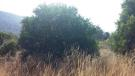 Land for sale in Cyprus - Larnaca...