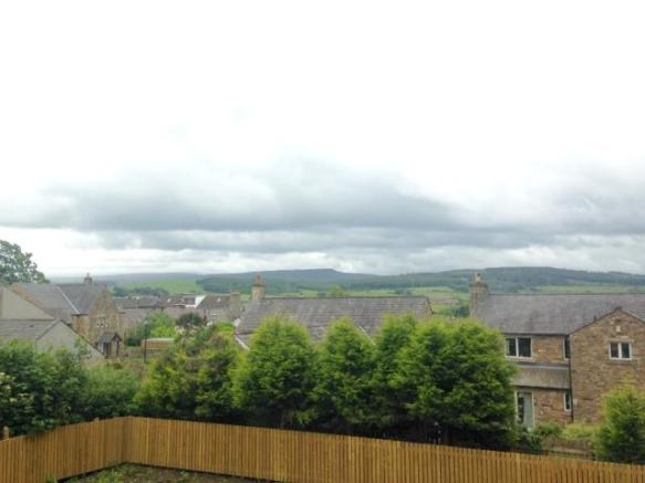View from plot 4