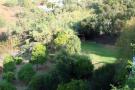 Garden and plot