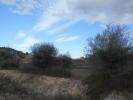 Aspe Land for sale