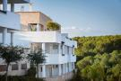 new Apartment in Sotogrande, Cádiz...