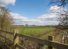 Alms Meadow