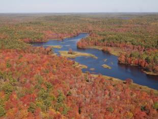 Fall Medway River