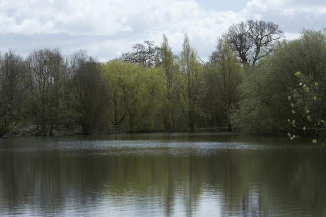 Shinfield Meadows