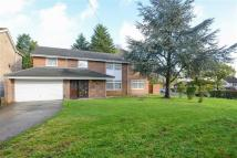 4 bedroom Detached property to rent in Lodore Green, Ickenham...