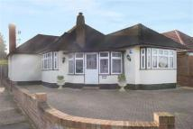 3 bed Detached Bungalow in College Drive, Ruislip...