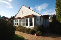 Detached Bungalow for sale in Reigate Road, Worthing...