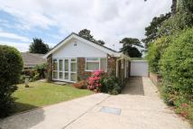 Detached Bungalow for sale in Firsdown Close, Worthing...