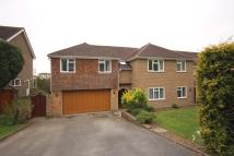 Detached house for sale in Longlands, Worthing, BN14