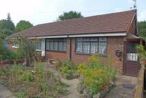 Harlington Road East Semi-Detached Bungalow for sale