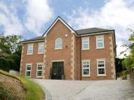 Nevilles Cross Bank Detached house for sale