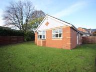 3 bedroom Detached Bungalow in Atherton Drive...