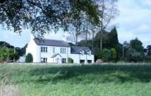 Detached house to rent in Elderfield, Castle Eden...