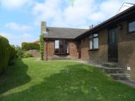 Detached Bungalow to rent in Edward Street, Hobson...