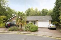 Detached Bungalow in Kerri Close, Barnet...