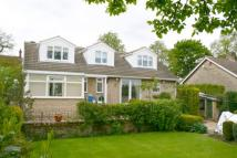 4 bedroom Detached home in Manor Road, Wales, S26