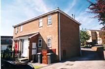 Studio flat in Oakfern Grove...
