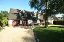 Chalet in West Parley, Ferndown