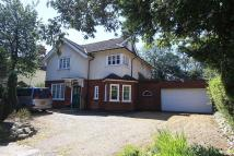 Detached home for sale in Strumpshaw Road...