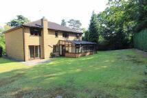 5 bedroom Detached home for sale in Milner Drive, Cobham...