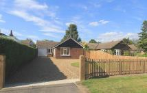 Detached Bungalow in Holbrook Road, Stutton...