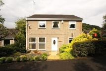 Detached house for sale in Oakfields, Burnopfield...