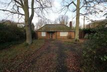3 bed Detached Bungalow for sale in Alvista, Widmoor...