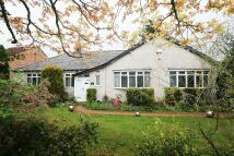 3 bedroom Detached Bungalow in 86, Altrincham Road...