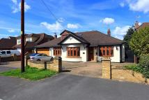 Detached Bungalow for sale in Moor Lane, Upminster...