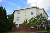 Flat to rent in Ridgemont, Halifax Road,