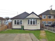 Detached Bungalow to rent in Ashingdon Road, Rochford...