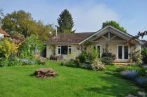 Bungalow to rent in Forest Row