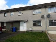 3 bedroom Terraced house in 3 Thrush Place, 3 Bed...