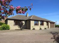 Detached Bungalow in Ferney Castle TD14