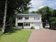 Detached property for sale in Sea Lane, Hayle