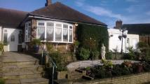 Semi-Detached Bungalow to rent in Plants Brook Road...