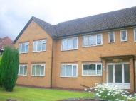 Flat to rent in St Peters Croft...