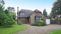 Detached home in College Road, Maidenhead...