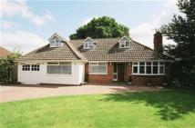 Bungalow for sale in Wavenham Close...