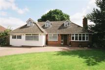 Detached Bungalow in Wavenham Close...