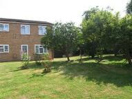Maisonette to rent in Albert Road, Mottingham...