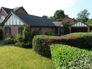 Detached Bungalow for sale in Lockerbie Close...