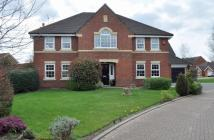 5 bedroom house in Holly Close...