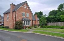 Detached property for sale in Pippin Lane, Rossett...