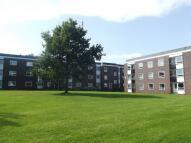 Ground Flat in Lancelyn Court , Spital